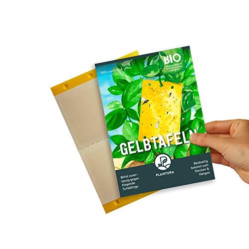 Plantura Gelbtafeln, 40 kleine Gelbsticker, insektizidfrei & geruchlos, gegen...