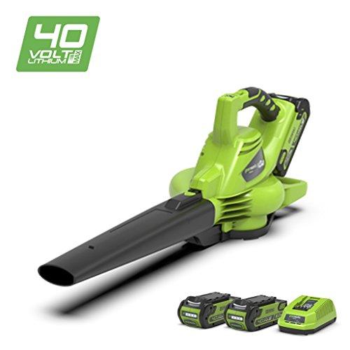 Greenworks Tools 24227UC 40 V Laubgebläse und Sauger inklusive 2 Akkus 2Ah und...
