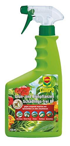 COMPO Grün- und Blühpflanzen Schädlings-frei AF, Bekämpfung von saugenden Insekten und...