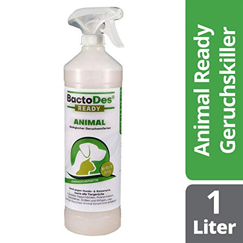 BactoDes Animal Ready - Geruchsentferner Fleckenentferner Spray, Gebrauchsfertig,...