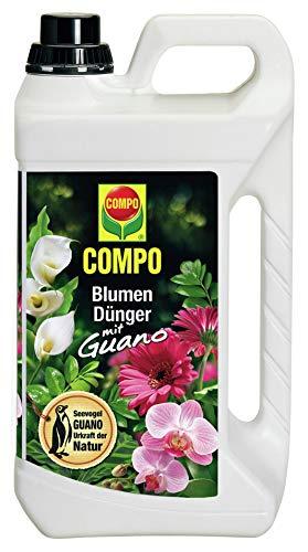 COMPO Blumendünger mit Guano für alle Zimmer-, Balkon- und Terrassenpflanzen,...