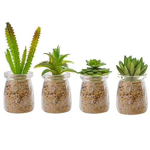 Belle Vous Mini Sukkulenten Künstlich Pflanzen im Glas (4 Stk) – Deko Pflanzen...