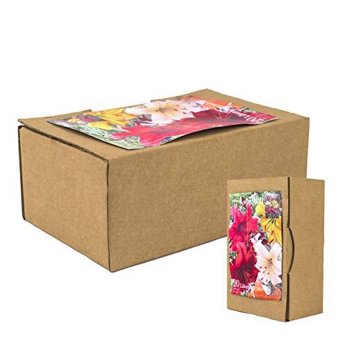 20echte Lilienzwiebeln in verschiedenen Farben - Blumenzwiebeln in Geschenkverpackung -...