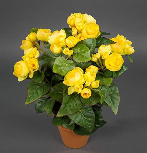 Seidenblumen Roß Begonie 38cm gelb im Topf LM Kunstpflanzen Kunstblumen künstliche...