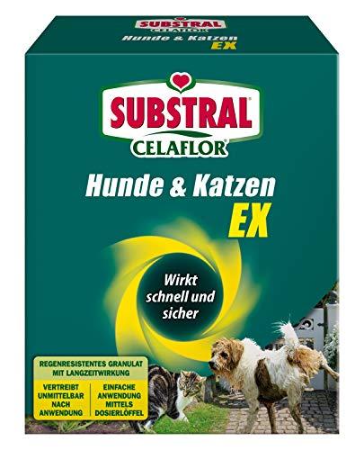 Substral Celaflor Hunde & Katzen Ex , Hund, Marder und Katze Abwehr und...