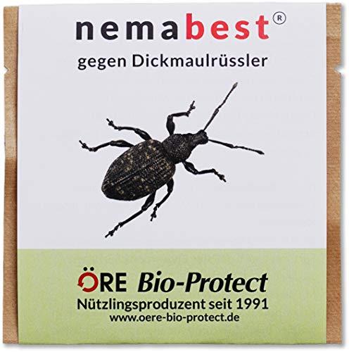 nemabest® HB Nematoden zur Bekämpfung des Dickmaulrüsslers - 50 Mio. für 100m²
