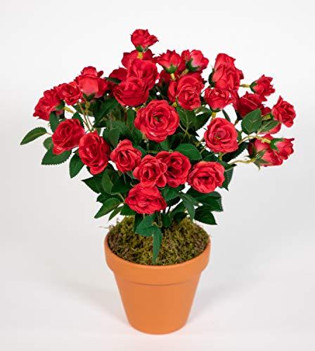 Seidenblumen Roß Rosenbusch 30cm rot im Topf ZF Kunstpflanzen Kunstblumen künstliche...
