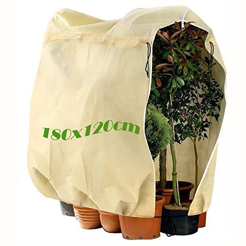 MQIAN Winterschutz Pflanzen 180 x 120CM, Pflanzenabdeckung für Frostschutz,...