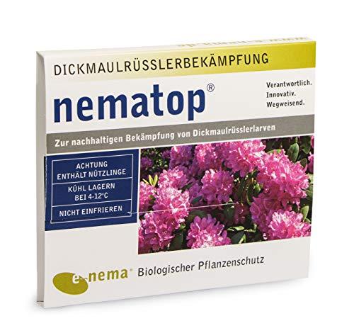 nematop® HB Nematoden zur Bekämpfung des Dickmaulrüsslers - 25 Mio. für 50m²