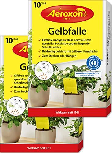 Aeroxon – Gelbsticker, Gelbfalle, Gelbtafeln, 20 teilbare Leimtafeln, perfekt bei...