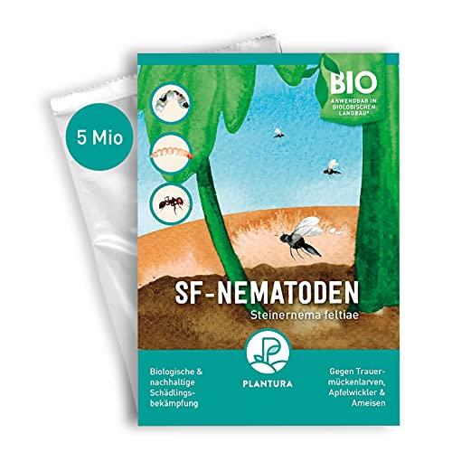 Plantura SF-Nematoden gegen Trauermücken, Apfelwickler & Ameisen, wirksam & nachhaltig, 5...