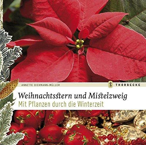 Weihnachtsstern und Mistelzweig: Mit Pflanzen durch die Winterzeit
