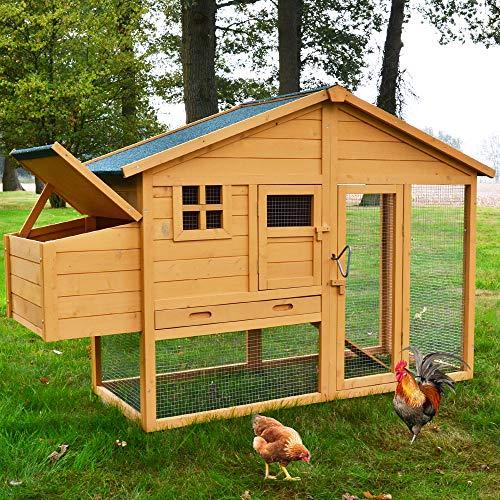 zooprinz hochwertige Hühnervoliere mit Nistkasten - aus massivem Vollholz und stabilem...