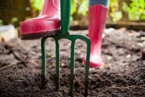 Die Grabegabel ist auch für viele Hobbygärtner ein unverzichtbares Gartengerät.