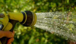 Gartenbewässerung für Pflanzen und Tiere