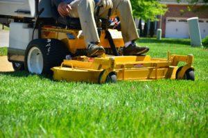 Im Sommer macht Rasenpflege großen Spaß.