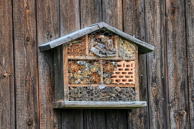 Insektenhotel Kinder bauen