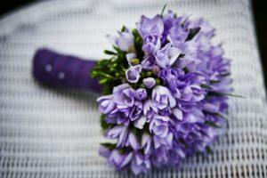 Ob Herbst oder Frühjahr, Blumen passen zu fast jeder Gelegenheit.
