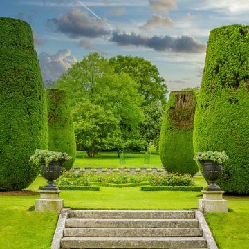 Rasen neu anlegen – Bau und Pflege eines schönen Gartens