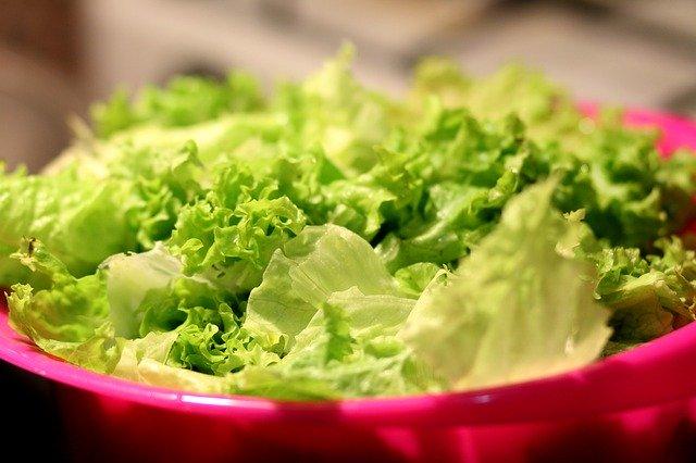 Salat ist gesund und lecker